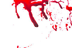 Concept de Halloween : Égoutture de sang Photos libres de droits