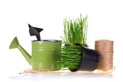 Concept de jardinage Photo stock
