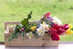 Concept de jardinage Photographie stock libre de droits