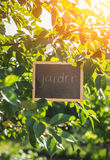 Concept de jardinage Tableau noir avec le mot Images stock