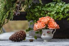 Concept de jour du ` s de Valentine Tasse de porcelaine avec des roses dans la neige Photos libres de droits