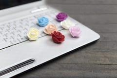 Concept de jour du ` s de Valentine, ordinateur portable, roses colorées sur le fond en bois gris Images stock