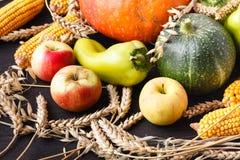 Concept de jour de thanksgiving - frontière ou cadre avec les potirons oranges et les feuilles colorées sur le fond en bois photos libres de droits