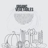 Concept de légumes frais illustration libre de droits
