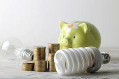 Concept de l'électricité d'économie Porcin pour l'argent, l'argent et les différentes ampoules sur un fond clair photo stock