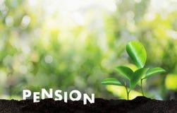 Concept de l'épargne d'argent de pension et retraite et peopl financiers Images libres de droits