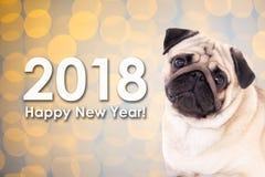 concept de la nouvelle année 2018 - chien de roquet au-dessus de fond de Noël avec l Photos stock