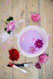 Concept de la rénovation avec la cuvette de couleur, fleurs Image libre de droits