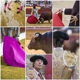 Concept de la tauromachie en Espagne photos libres de droits