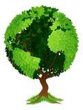 Concept de la terre de globe du monde d'arbre Photo libre de droits