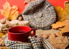 Concept de liste de seau de chute Attaquez la boisson aromatique confortable de thé en écharpe et festins Appréciez l'atmosphère  images libres de droits