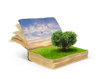 Concept de livre magique couvert d'herbe Image libre de droits
