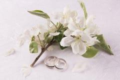 Concept de mariage avec des fleurs d'Apple-arbre photographie stock libre de droits
