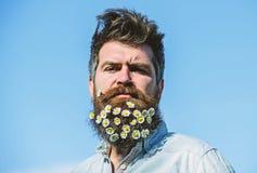 Concept de masculinité Hippie sur le visage strict, fond de ciel bleu, l'espace de copie L'homme avec la barbe et la moustache ap photos stock