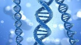 Concept de molécule d'ADN, banque de vidéos