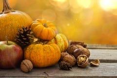 Concept de nature d'automne Image libre de droits