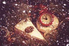 Concept de Noël Son délicieux de pin impeccable de camembert et de brie Photographie stock libre de droits
