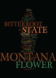 Concept de nuage de Montana State Flower Text Background Word Images stock