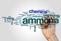 Concept de nuage de mot d'ammoniaque sur le fond gris Photos libres de droits