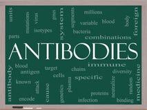 Concept de nuage de Word d'anticorps sur un tableau noir Images libres de droits