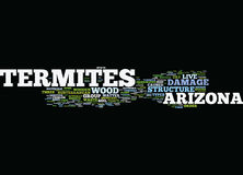 Concept de nuage de Word de termites de l'Arizona illustration libre de droits