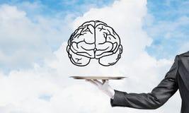 Concept de ontwikkeling van meningscapaciteiten Royalty-vrije Stock Afbeelding
