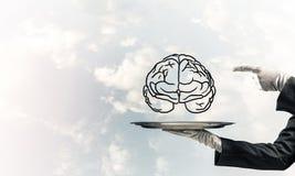 Concept de ontwikkeling van meningscapaciteiten Stock Afbeelding