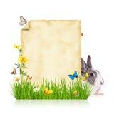 Concept de Pâques avec le papier blanc sur le blanc image stock