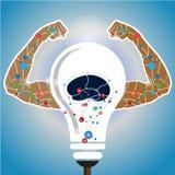 Concept de pensée de Brain Human Photo libre de droits