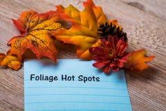 Concept de points chauds de feuillage sur le carnet et le conseil en bois Image stock