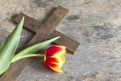 Concept de Pâques de tulipe et de croix de ressort Photographie stock