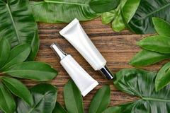 Concept de produit de beauté naturel de soins de la peau, récipients cosmétiques de bouteille sur le fond de fines herbes vert de Photo libre de droits