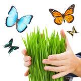 Concept de protection d'écologie Image libre de droits