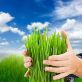 Concept de protection d'écologie Photo stock