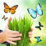 Concept de protection d'écologie Photos libres de droits