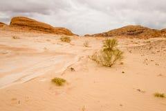 Concept de réchauffement global de fond de paysage de désert Images stock