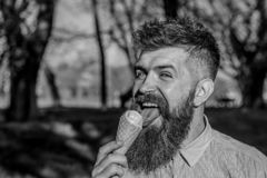 Concept de refroidissement L'homme avec la longue barbe l?che la cr?me glac?e, fin  Homme barbu avec le cornet de cr?me glac?e Ho photo stock