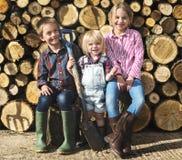 Concept de rondin de bois de charpente de bois de construction de bois de charpente de bois de chauffage de bois de chauffage photographie stock libre de droits