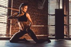 Concept de séance d'entraînement de formation de force de forme physique - fille sexy de sport de bodybuilder musculaire faisant  images stock