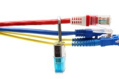 Concept de sécurité d'Internet avec des câbles de cadenas et de réseau Photos stock