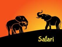 Concept de safari d'éléphants illustration stock