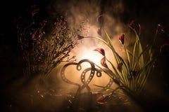 Concept de salutation de Valentine Deux coeurs sur le fond brumeux modifié la tonalité foncé Coeurs transparents Photographie stock libre de droits