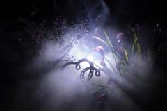 Concept de salutation de Valentine Deux coeurs sur le fond brumeux modifié la tonalité foncé Coeurs transparents Photo stock