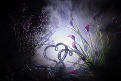 Concept de salutation de Valentine Deux coeurs sur le fond brumeux modifié la tonalité foncé Coeurs transparents Images stock