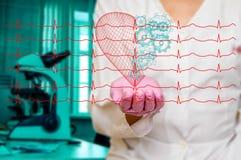 Concept de santé et de médecine - le docteur féminin tenant un coeur rouge avec des vitesses avec l'ecg raye Image libre de droits