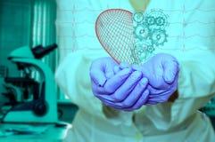 Concept de santé et de médecine - le docteur féminin tenant un coeur rouge avec des vitesses avec l'ecg raye Photographie stock