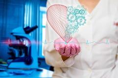 Concept de santé et de médecine - le docteur féminin tenant un coeur rouge avec des vitesses avec l'ecg raye Photo stock