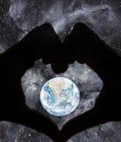 Concept de soin de la terre de Platet Photographie stock
