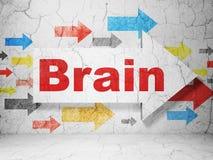 Concept de soins de santé : flèche avec le cerveau sur le fond grunge de mur Photo libre de droits