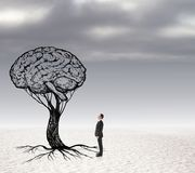 Concept de solution avec le cerveau et l'homme d'affaires Photographie stock